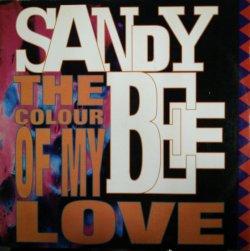 画像1: Sandy Bee / The Color Of My Love 【中古レコード】 2893