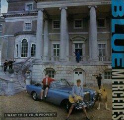 画像1: Blue Mercedes / I Want To Be Your Property 【中古レコード】1721
