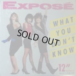 画像1: Exposé / What You Don't Know 【中古レコード】2061 ★