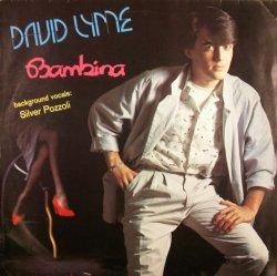 画像1: David Lyme / Bambina  【中古レコード】2766