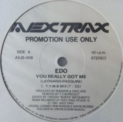 画像1: Edo / You Really Got Me (AVJS-1018) T.Y.M. B Mix 【中古レコード】綺麗 YYY0-612-1-1B